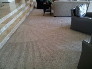 Vacuum_Cleaning_House_Cleaning_Tracy_Mountain-House_Banta_River-Islands_Lathrop_Manteca